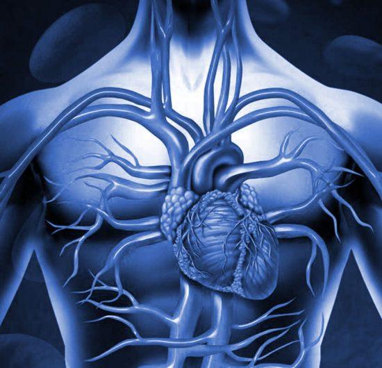 Kalp Damar Tıkanıklığı